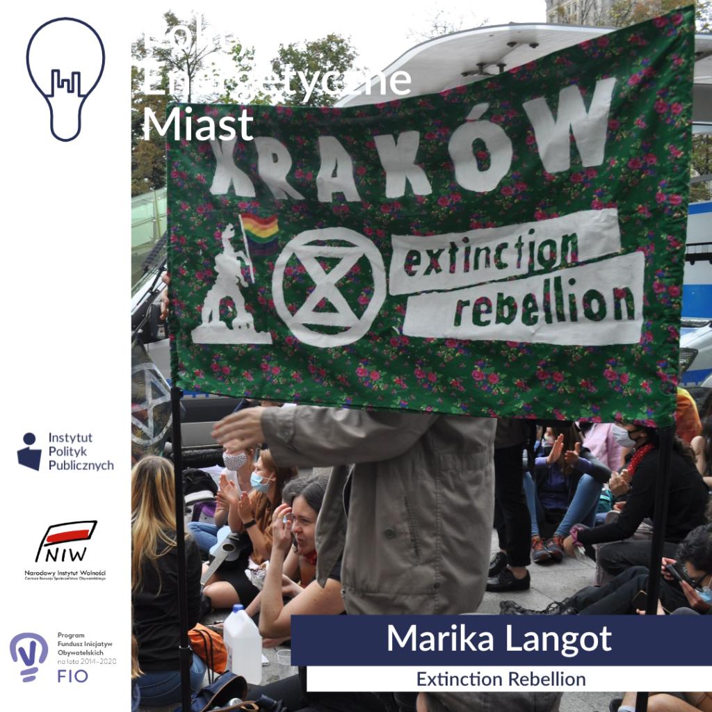 IPP_energetyka__Marika Langot